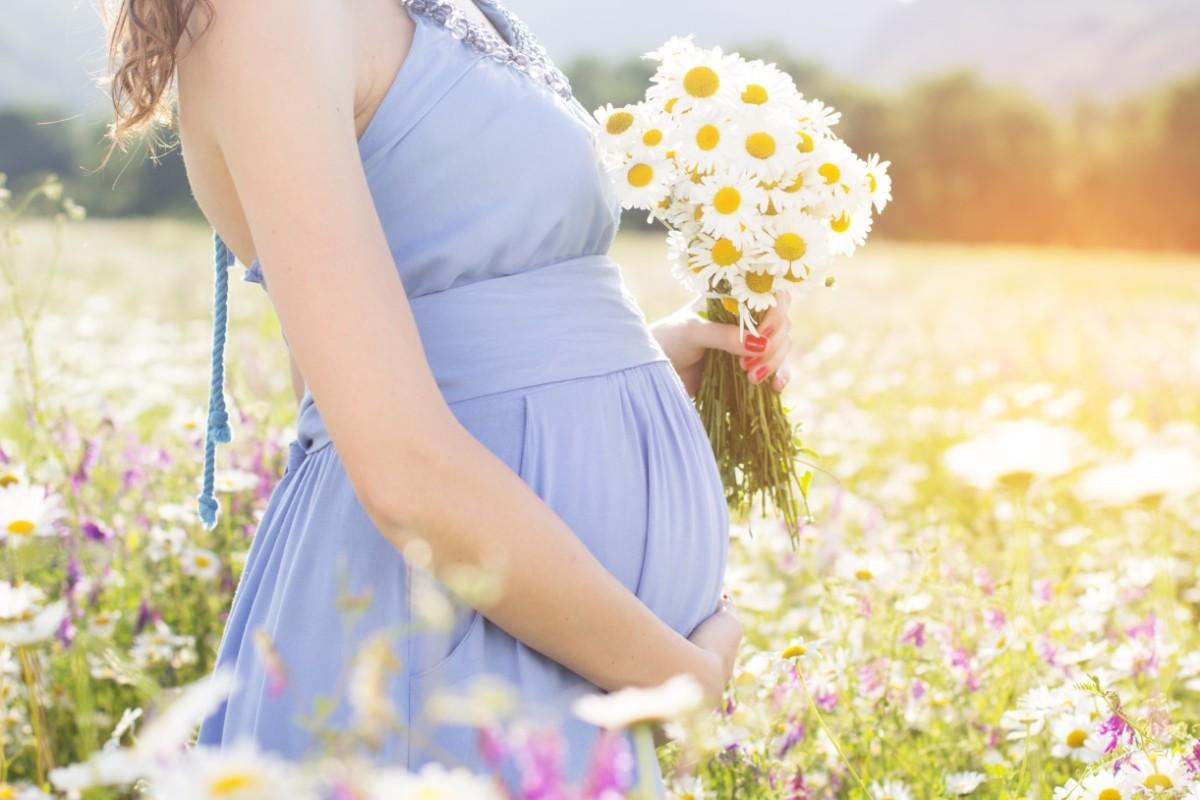 Полезные свойства и способы применения ромашки при беременности