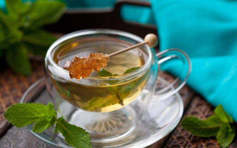 ортосифона почечный чай польза и вред