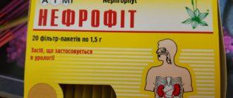Фиточай Нефрофит