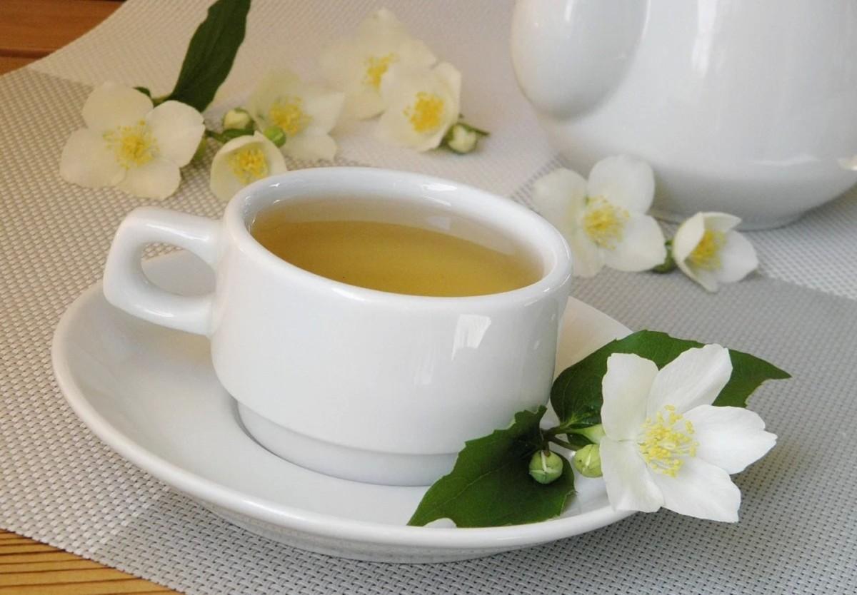 Цветы жасмина польза и вред