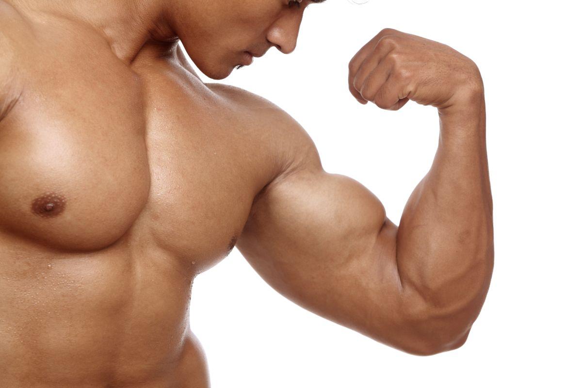 Мышечная масса