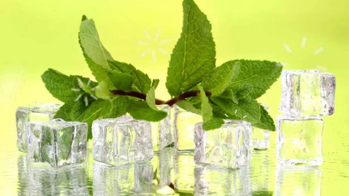 Натуральный мятный чай – напиток с многовековой историей, который насыщает, освежает, исцеляет, обладает душистым ароматом