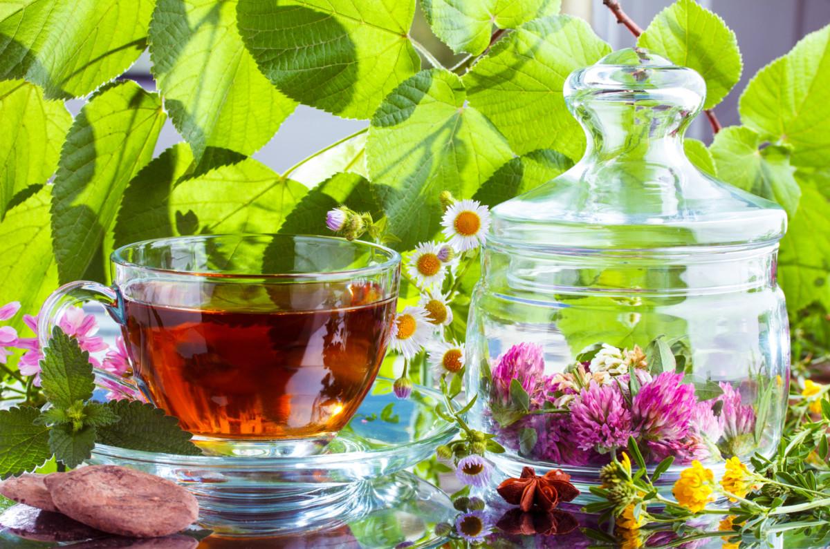 Успокаивающие чаи в аптеке