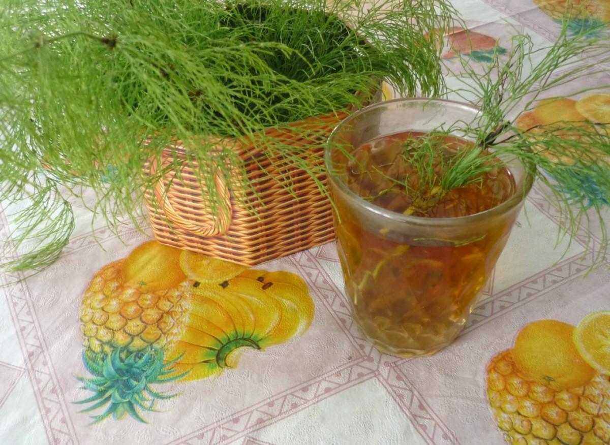 Чай из хвоща полевого