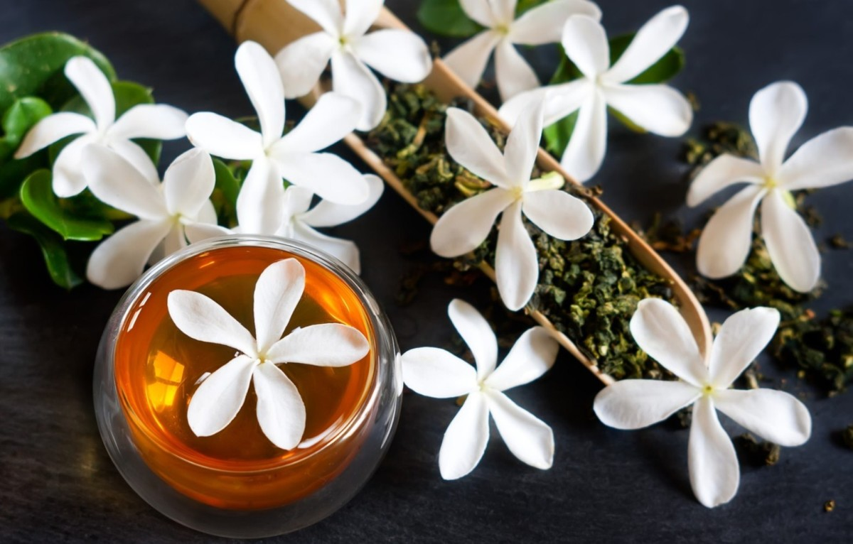 Зеленый чай Китайский жасмин