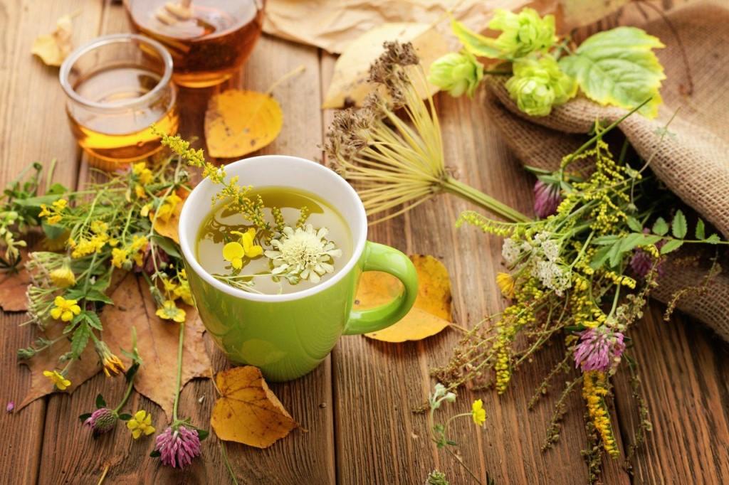 Не менее популярными холодными напитками, будут отвары трав мяты, мелисы, ромашки и шалфея