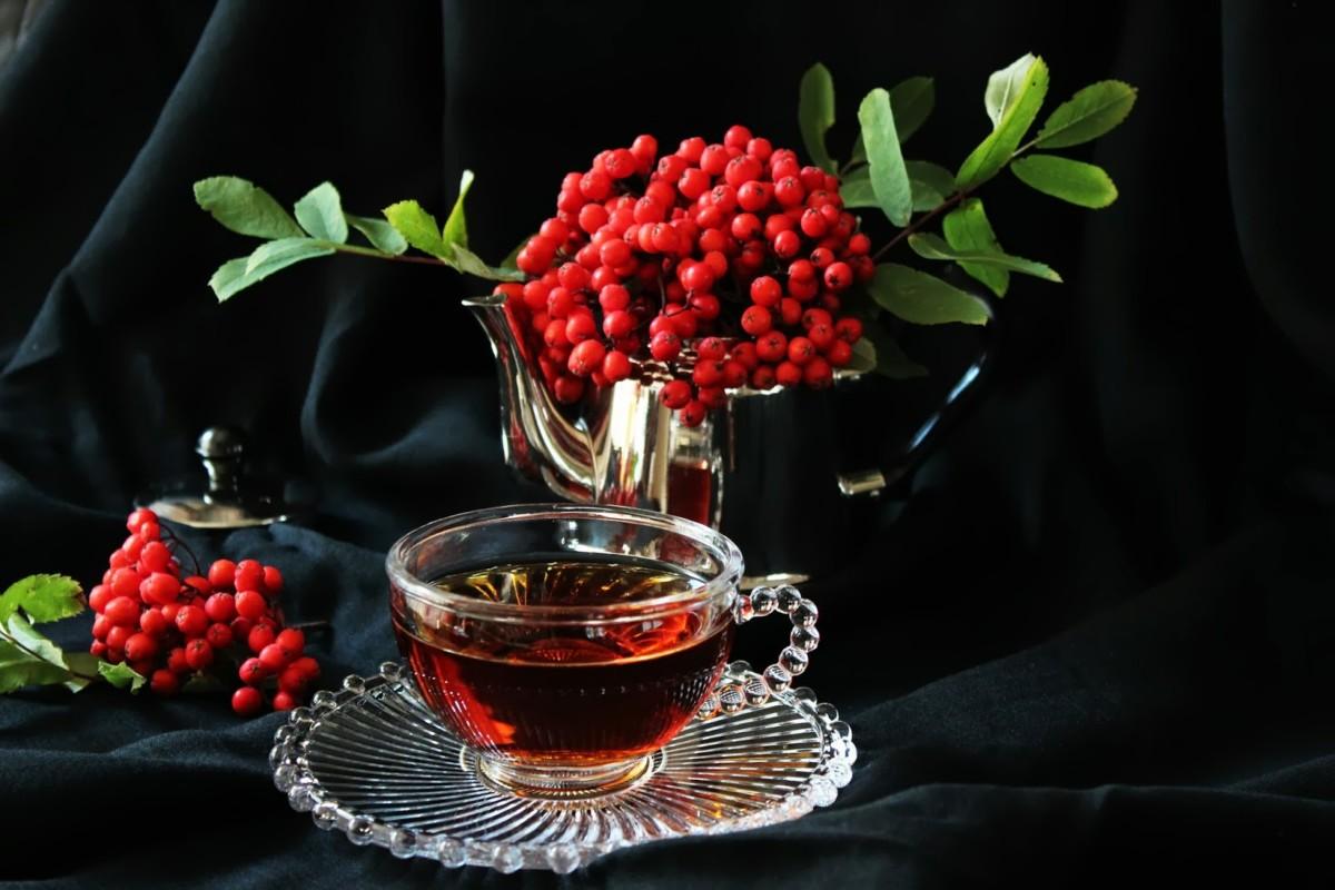 Вкусный и ароматный чай из засушенных листьев калины поможет справиться с болезненными менструациями, а также укрепить иммунные свойства организма