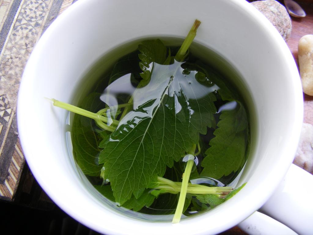 В чай с малиссой можно добавлять как мяту, так и кипрей