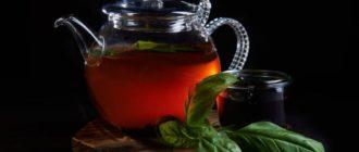 Польза и вред чая с базиликом