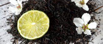 Польза и вред чая с бергамотом