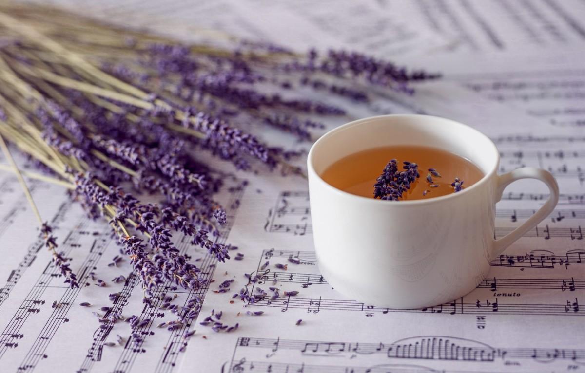 Чай с лавандой с незапамятных времен использовался народной медициной в качестве лечебного средства