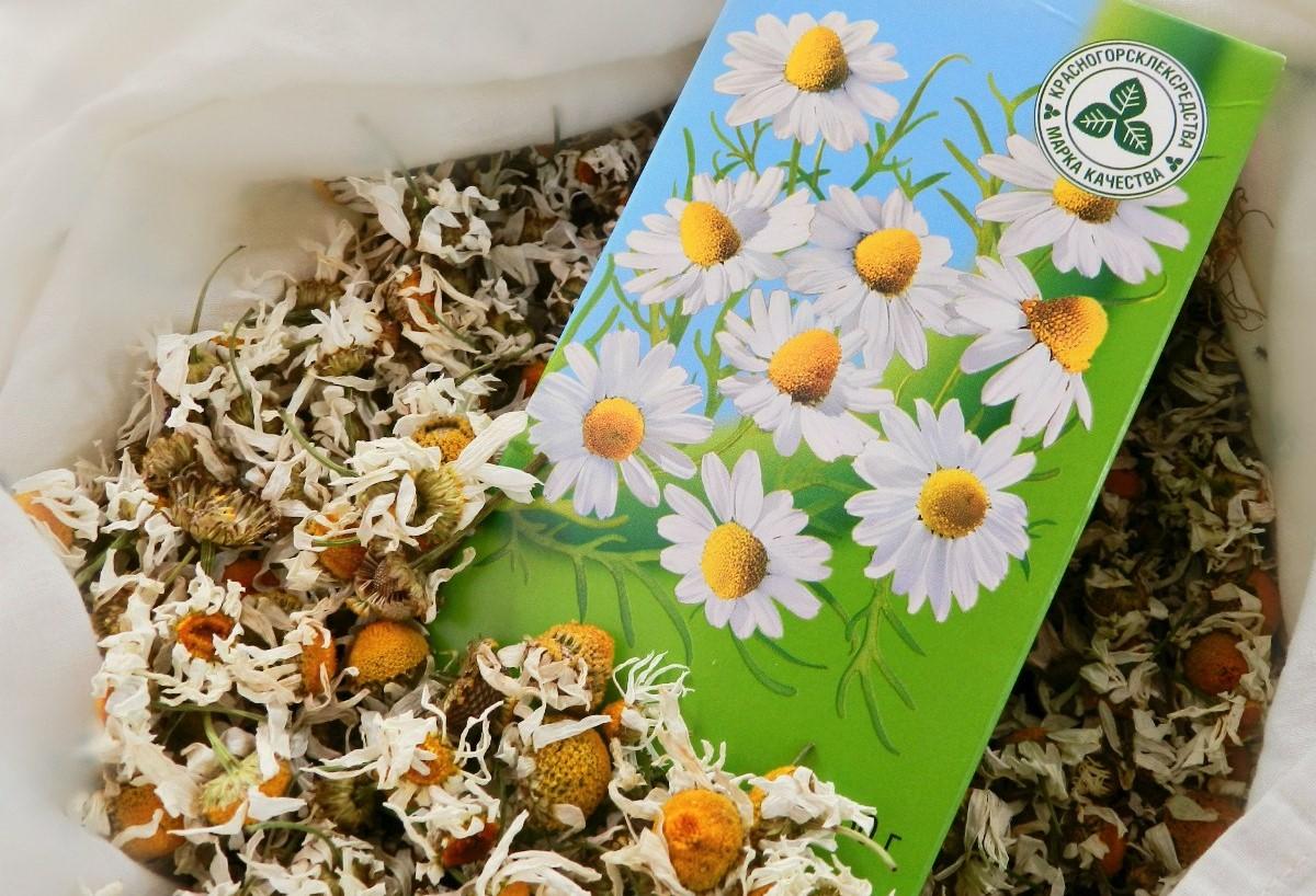 Как правильно заваривать ромашковый чай в пакетиках