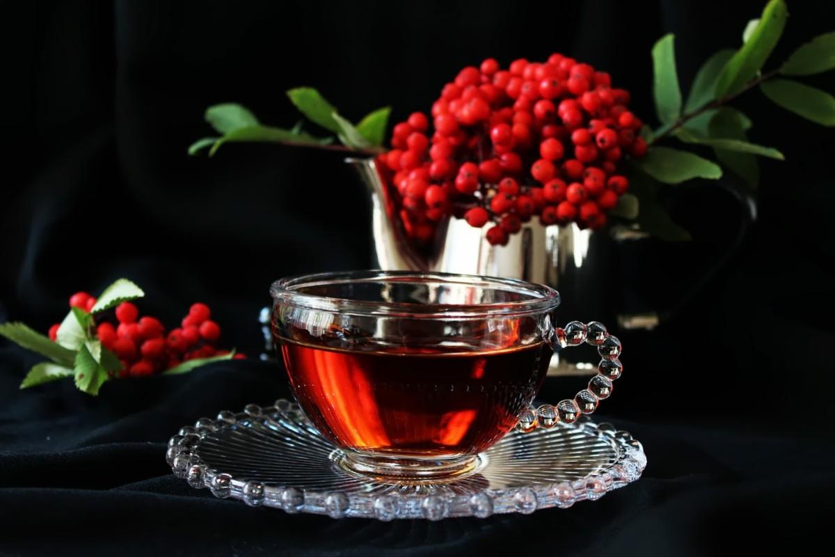 Рябиновый чай не только поможет похудеть, но и обогатит организм витаминами