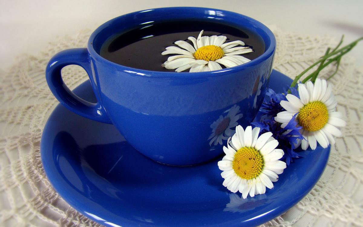 Иногда на ромашковый чай развивается аллергическая реакция