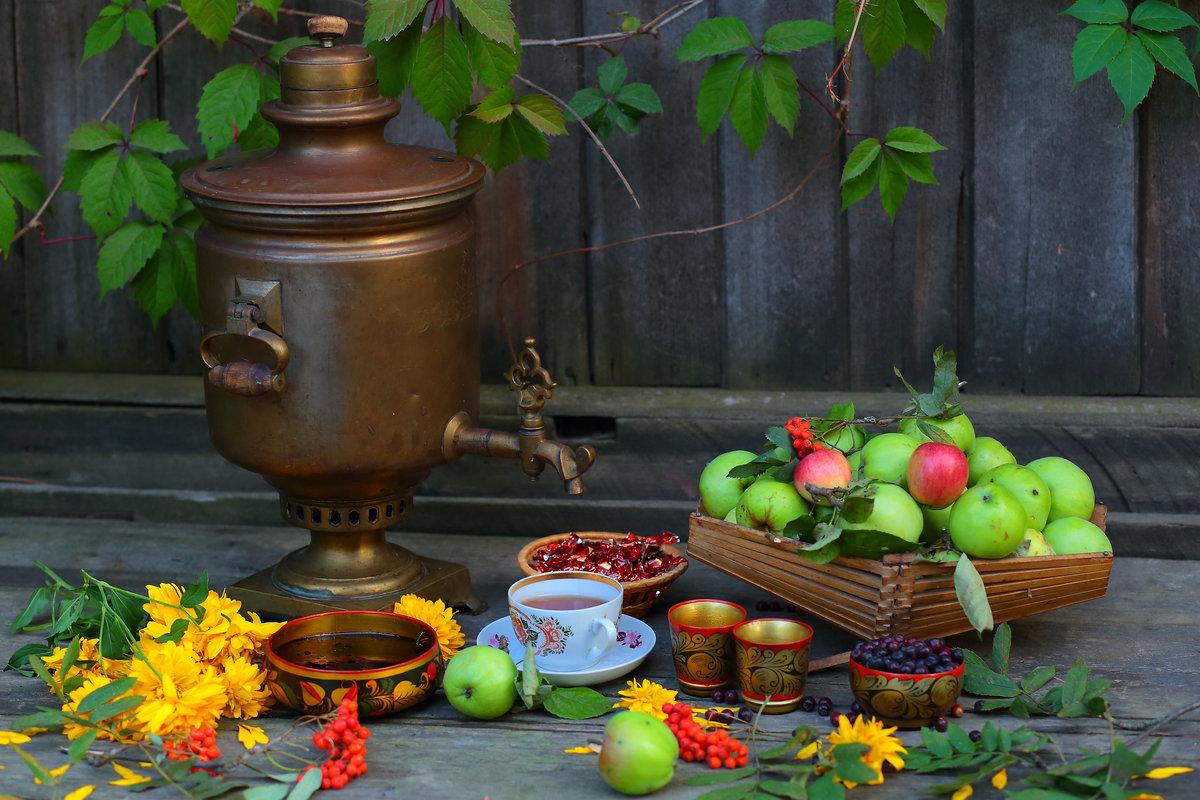 Яблочный чай — источник здоровья, он защищает от сердечно-сосудистых, простудных и других заболеваний
