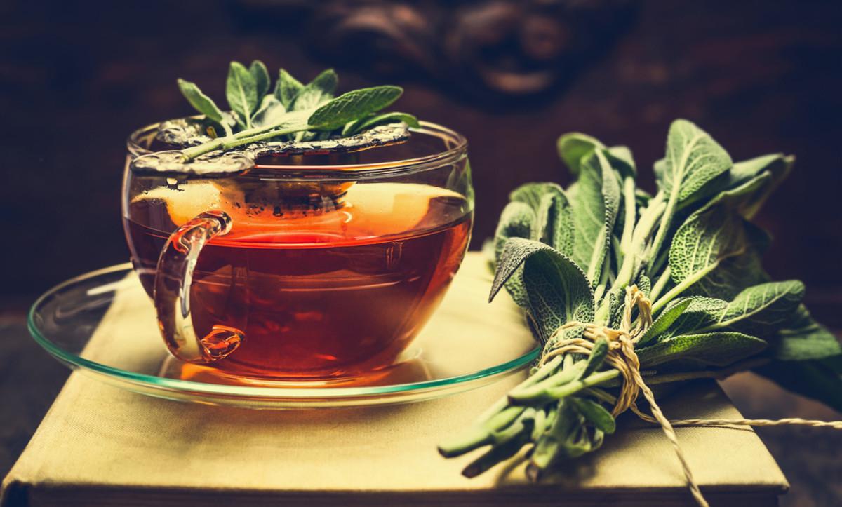 Шалфей чай показания к применению